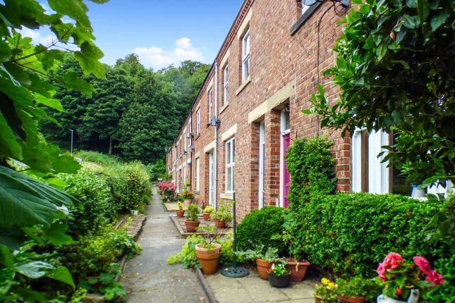 Thumbnail Flat to rent in Auburn Place, Morpeth