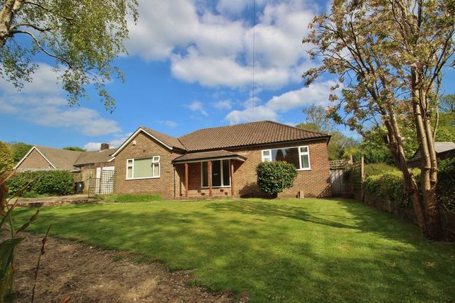 Thumbnail Detached bungalow for sale in The Warren, Mayfield