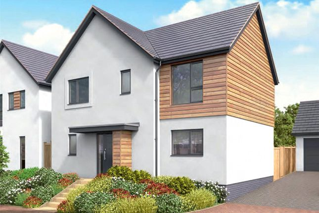 Thumbnail Detached house for sale in Moor View, Marldon, Paignton
