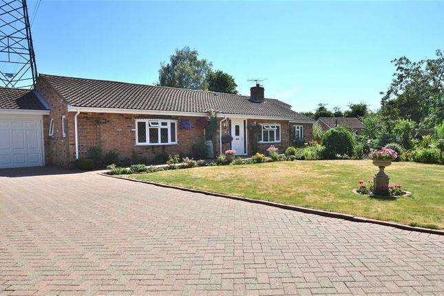 Thumbnail Detached bungalow for sale in Grange Road, Blunham, Bedford