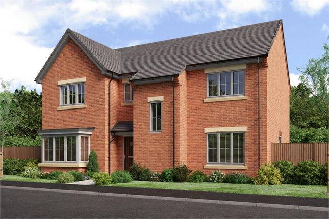"Thumbnail Detached house for sale in ""The Rosebury"" at Low Lane, Acklam, Middlesbrough"