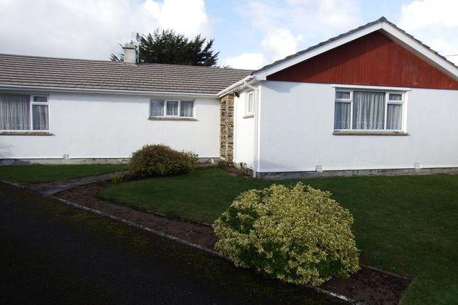 Thumbnail Bungalow to rent in Sycamore Close, Splatt, Rock, Wadebridge