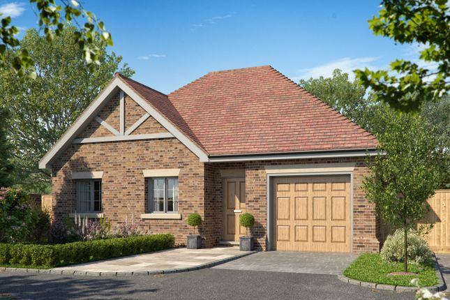 Thumbnail Detached bungalow for sale in The Street, Hascombe