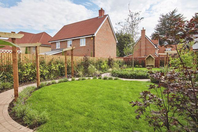 4 bedroom detached house for sale in The Elder At St Luke's Park, Runwell Road, Runwell, Essex