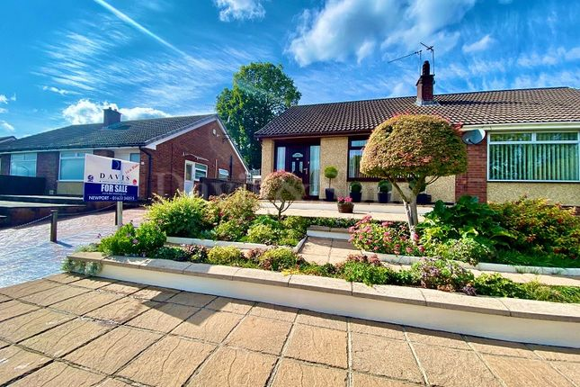 Thumbnail Semi-detached bungalow for sale in Catalpa Close, Off Malpas Road, Newport.