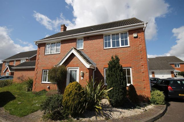 Thumbnail Property to rent in Speedwell Way, Norwich
