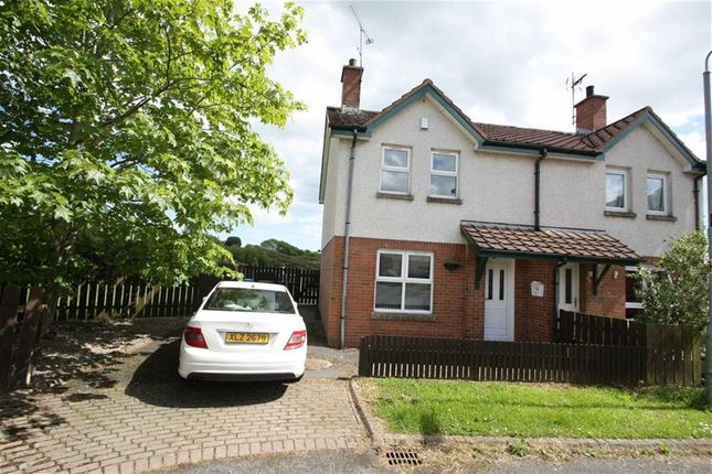 Thumbnail Semi-detached house to rent in Windmill Walk, Ballynahinch