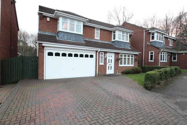Thumbnail Detached house for sale in Mill Dene View, Jarrow