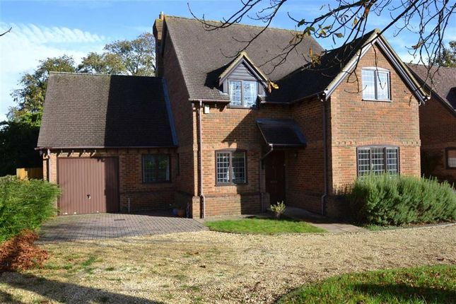 Thumbnail Detached house for sale in Essex Street, Newbury, Berkshire