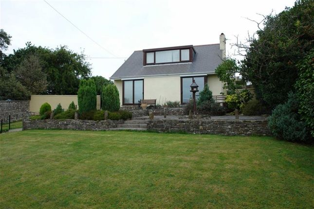 Thumbnail Detached house to rent in Warren Lane, Torrington, Devon