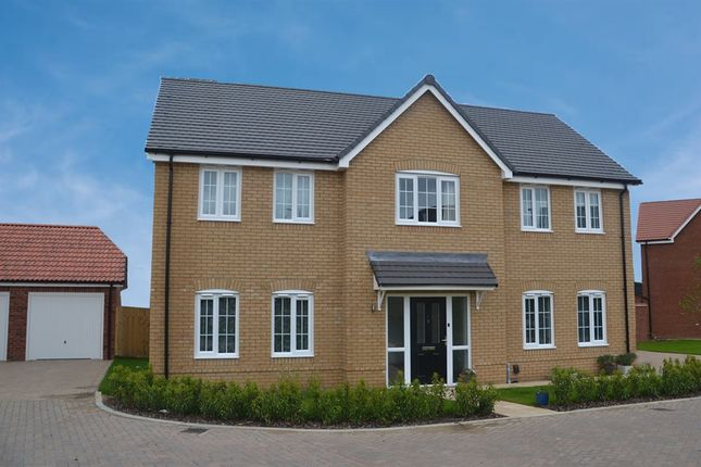 """4 bed property for sale in """"The Woodford"""" at The Pines, Cringleford, Norwich NR4"""