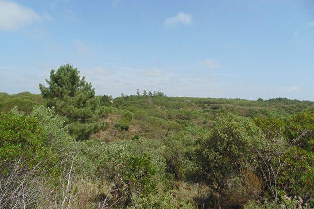 Land for sale in Estrada De Barão De São João, 8600, Portugal