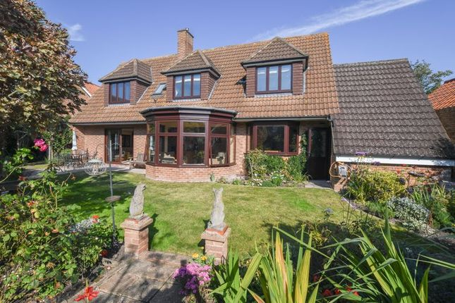 Thumbnail Detached house for sale in New Street, Sandwich