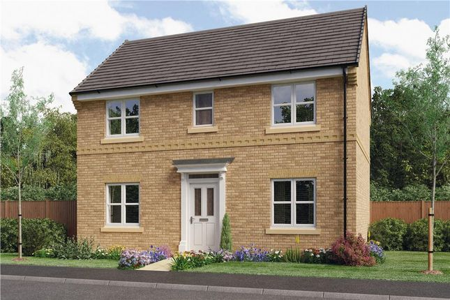 "Thumbnail Detached house for sale in ""Draper"" at Oteley Road, Shrewsbury"