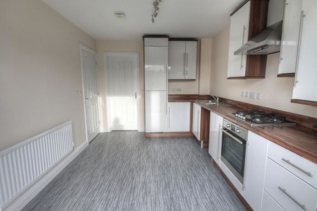 Thumbnail Property to rent in Seagent Place, Shotley Bridge, Consett
