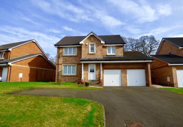 Front of Summerpark Road, Dumfries, Dumfries And Galloway DG1