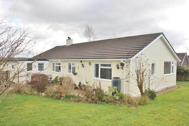 Thumbnail Bungalow to rent in Liftondown, Lifton