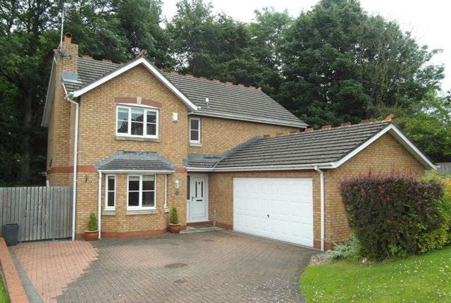 Thumbnail Detached house for sale in Larch Drive, Stanwix, Carlisle, Cumbria