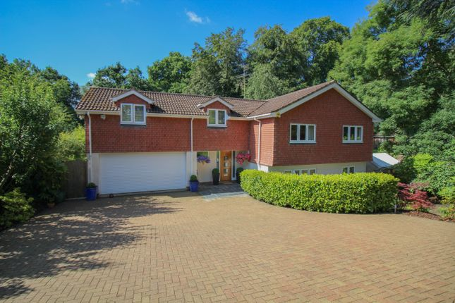 Thumbnail Detached house to rent in Parkside, Farnham
