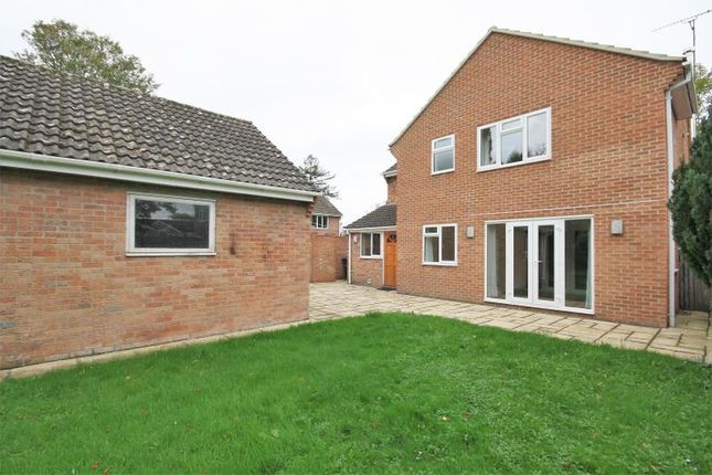 Thumbnail Detached house to rent in Pye Lane, Broad Town, Swindon
