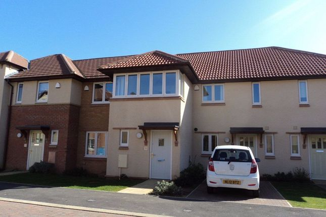 Thumbnail Terraced house to rent in Timothy Hackworth Drive, West Park