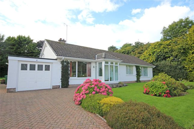 Thumbnail Detached bungalow for sale in Iona, 4 St. Johns Crescent, Stainton, Penrith, Cumbria