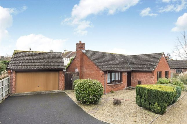 Thumbnail Detached bungalow for sale in Loretto Gardens, Axminster, Devon