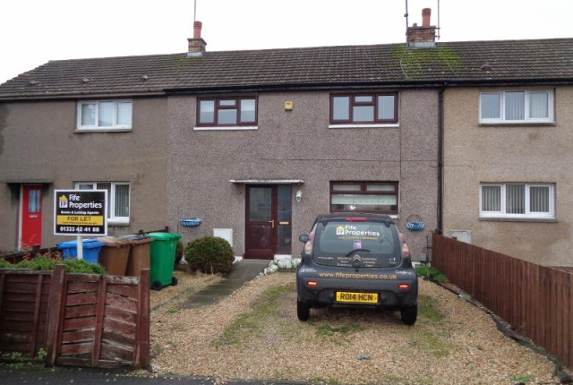 Thumbnail Terraced house to rent in Alder Terrace, Methil