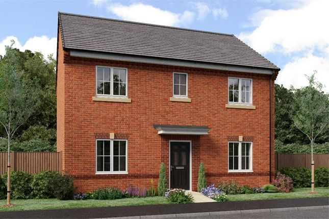 "Thumbnail Detached house for sale in ""The Buchan"" at Netherton Colliery, Bedlington"