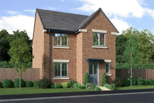 """Thumbnail Detached house for sale in """"Blackwood"""" at Henthorn Road, Clitheroe"""