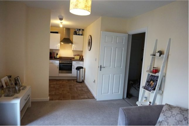 Thumbnail Flat to rent in Elsie Place, Exeter