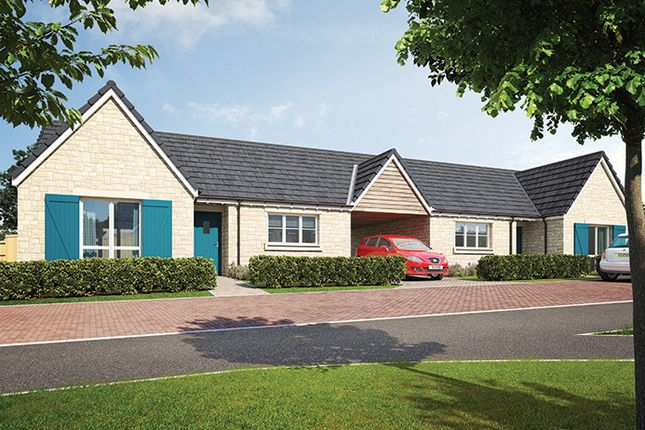 "Thumbnail Property for sale in ""The Lydiard"" at William Morris Way, Tadpole Garden Village, Swindon"
