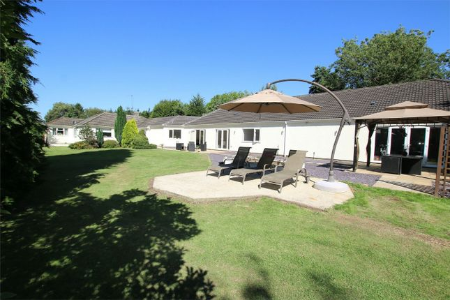 Thumbnail Detached bungalow for sale in Castle Rising Road, South Wootton, King's Lynn