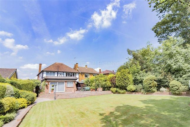 Thumbnail Detached house to rent in Newlands Road, Woodford Green