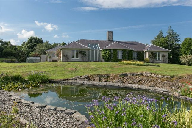 Thumbnail Detached house for sale in Plantation Road, Saintfield, Ballynahinch