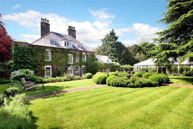 Thumbnail Detached house to rent in Church Lane, Worting, Basingstoke
