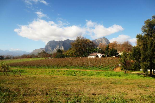 Le Pommier Wine Estate - A 15.7  Hectare Wine Farm