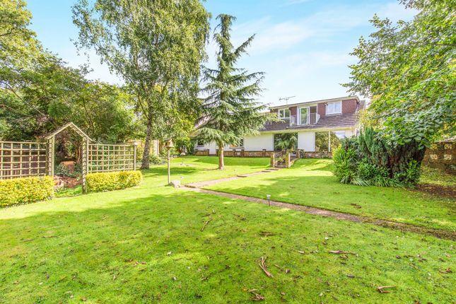 Thumbnail Detached bungalow for sale in Botley Road, Fair Oak, Eastleigh