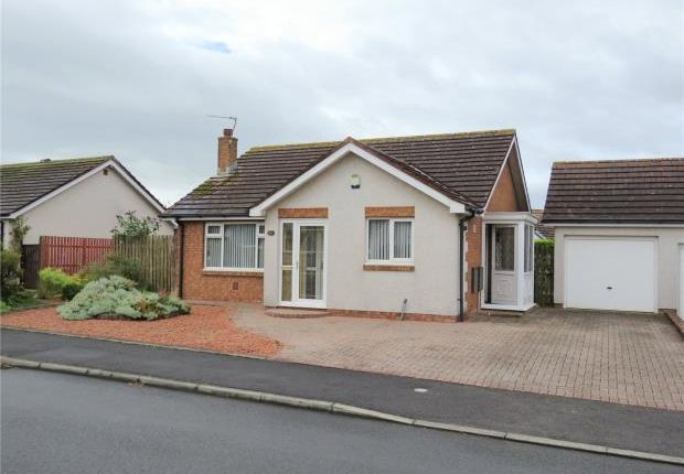 Thumbnail Detached bungalow for sale in Sycamore Road, Maryport, Cumbria