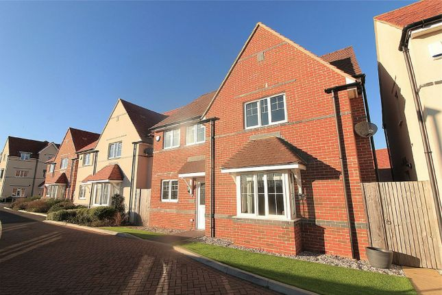 Thumbnail Detached house for sale in Northcliffe, Bexhill On Sea, East Sussex