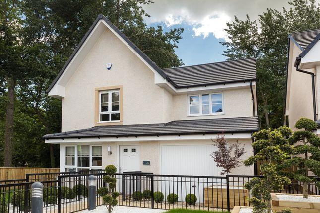 "Thumbnail Detached house for sale in ""Balvenie"" at Rowan Street, Wishaw"