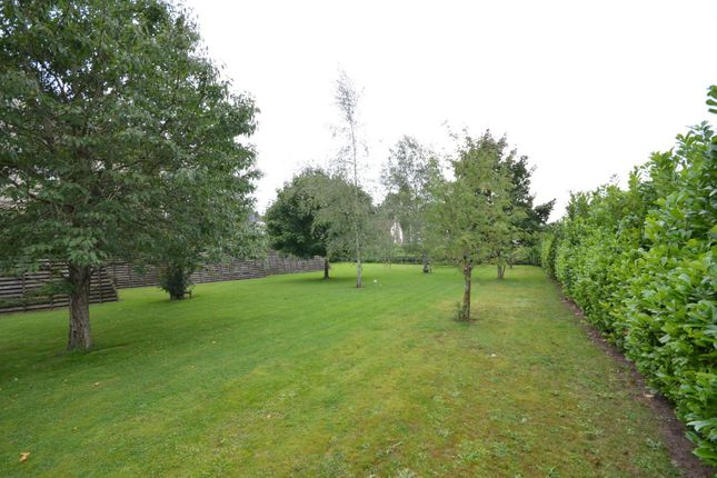 Communal Garden of Trescothick Close, Keynsham, Bristol BS31