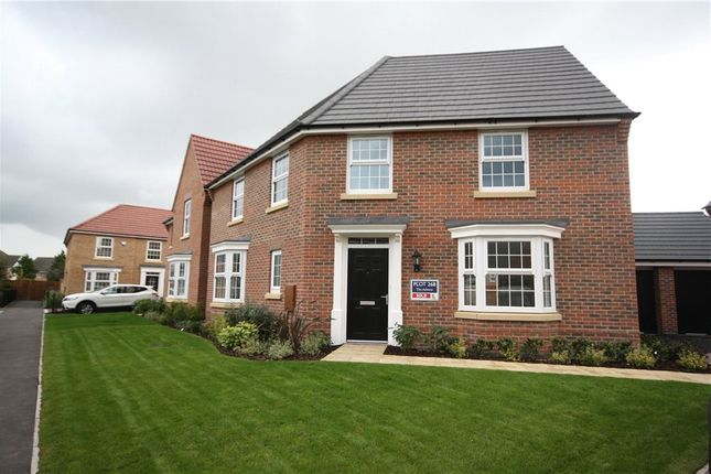 Thumbnail Semi-detached house to rent in Livia Avenue, North Hykeham, Lincoln, Lincolnshire
