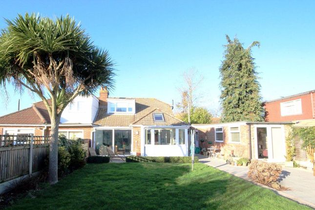 Thumbnail Bungalow to rent in Chestnut Drive, Worth, Deal