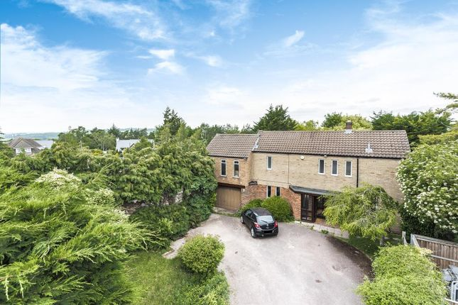 Thumbnail Detached house to rent in Arnolds Way, Botley