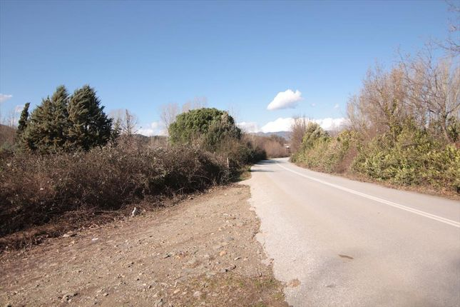 Thumbnail Land for sale in Gomati, Chalkidiki, Gr