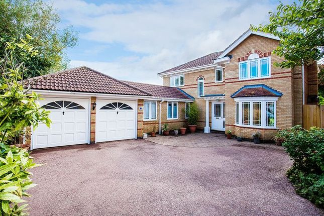 Thumbnail Detached house for sale in Mallard Drive, Buckingham