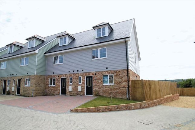 Thumbnail Terraced house to rent in Snowberry Road, Newport