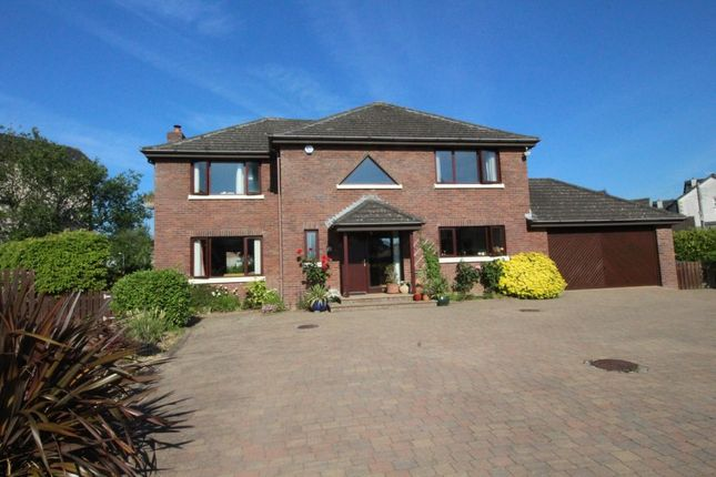 Thumbnail Detached house for sale in Old Shore Road, Carrickfergus