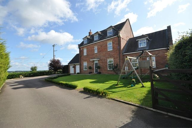 Thumbnail Detached house for sale in Hawthorn Avenue, Mawsley Village, Kettering, Northants